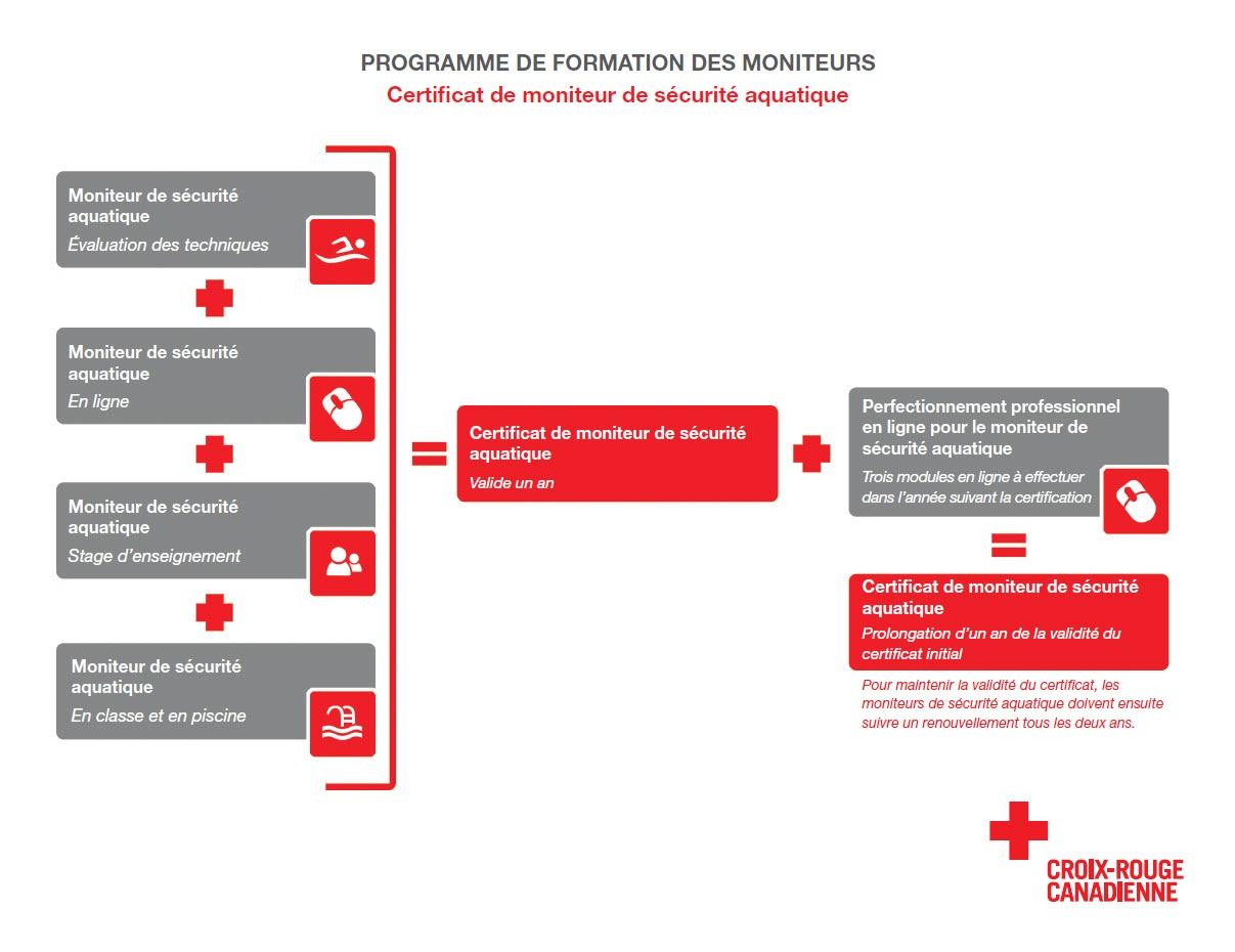Organigramme infographique qui illustre les étapes requises pour le programme de formation des moniteurs, certificat de moniteur de sécurité aquatique